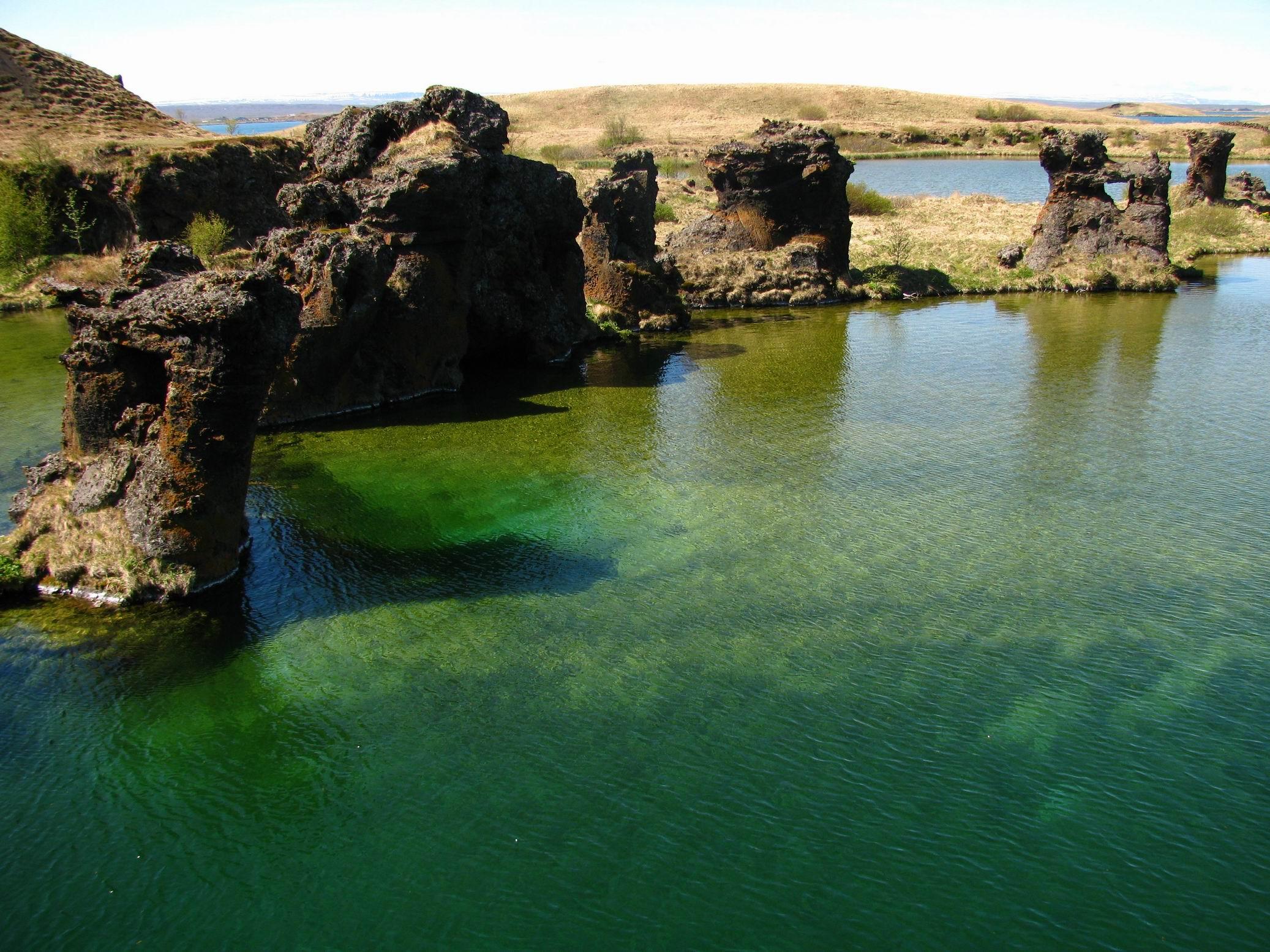 Islandzki folk